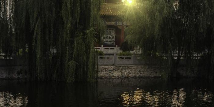 Landschaft Chinesische Bewegungskunst