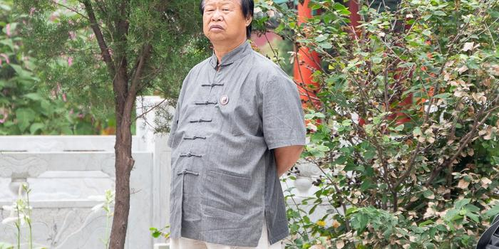 Meister Yang ZhenHe